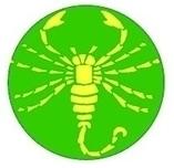 ATV Scorpio